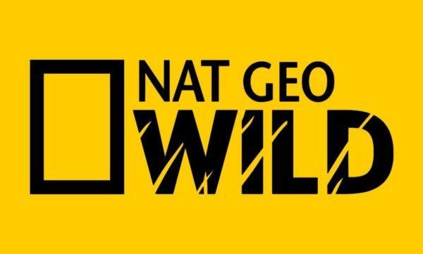 watch Nat Geo Wild online