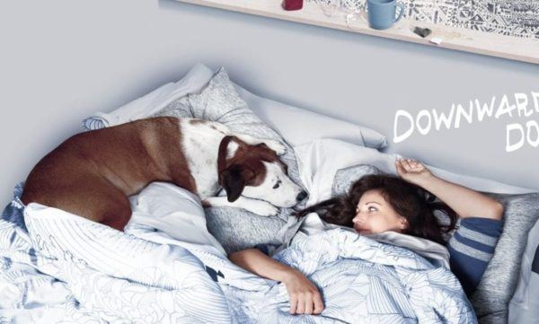 watch downward dog online